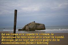 Le silence … Le verbeux m'a appris le silence, le fanatique la tolérance et le cruel la bonté. Étrange, je ne leur éprouve guère de la reconnaissance.[Khalil Gibran]