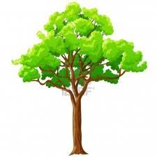 A tree would be place in upper stage left because in this scene cecily confesses when she accepted Algernon's proposal