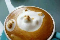 Who else loves this bear latte art? #Coffee #MrCoffee