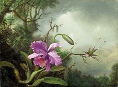 Heade: Orchid and Hummingbird