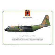 Lockheed KC-130H Hercules FAB-2462