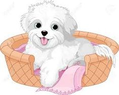 Image result for puppy dog cartoon images