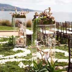Shedding-for-the-Wedding-Ceremony-decor-Eco-Lovers