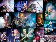 Collage from Magic Pie concert