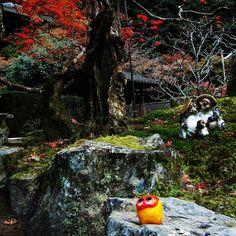 Relaxing at Nanzen-j
