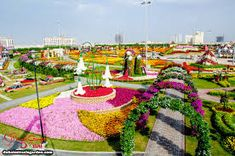 Bildresultat för flower park dubai