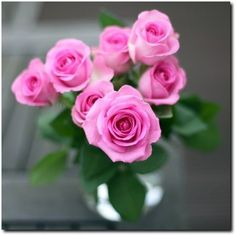 Pink roses in vase Beautiful Flowers Images, Flower Images, Beautiful Roses, Happy Flowers, Pretty Flowers, Purple Roses, Pink Flowers, Coming Up Roses, Hanging Flowers