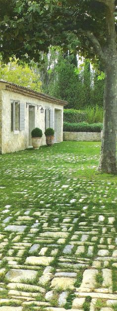 [Cote+Sud,+Dec+2008] Pavers w/ grass love