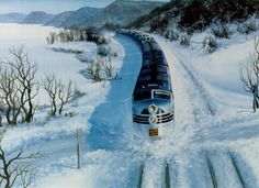 Train through the snow