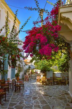 Naxos Island, Greece Santorini, Greece, Sidewalk, Island, Amazing, Plants, Photography, Travel, Greece Country