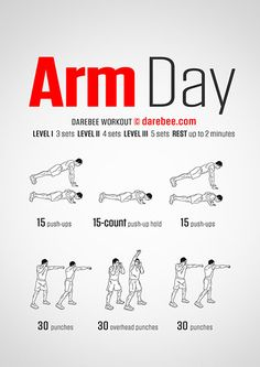 Arm Day Workout