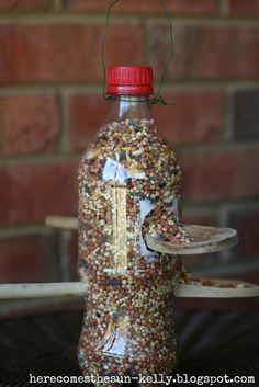 Soda Bottle Bird Feeder-great kids project if too young for building a bird house