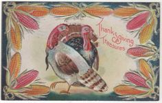 Turkey Hen and Gobbler Red and Yellow Ears of Corn Vintage Thanksgiving Postcard