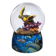 Colorful Majestic Turtle Swimming in Coral Reef Snow Globe