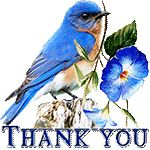 Thank you by KmyGraphic on DeviantArt How Beautiful, Beautiful Flowers, Thank You Greetings, 2017 Images, Thankful, Deviantart, Bird, Artist, Gifts