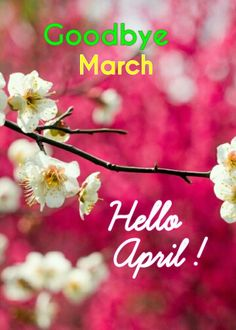 Goodbye March. Hello April