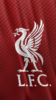 Liverpool Wallpapers for PC images) - WallpaperForYourPhone Liverpool Images, Liverpool Logo, Liverpool Anfield, Salah Liverpool, Liverpool Players, Liverpool Football Club, Iphone Wallpaper Liverpool, Lfc Wallpaper, Liverpool Wallpapers