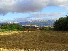 Trekking the Camino