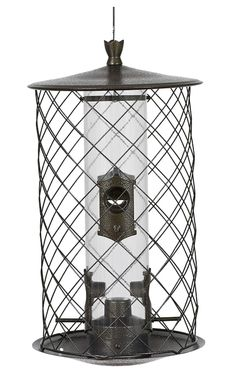 Squirrels love the food you put out for the wild birds in your area. If you'd like to feed the neighborhood birds without feeding the squirrels too, you can get a squirrel proof bird feeder. Squirrel Proof Bird Feeders, Wild Bird Feeders, Wild Bird Food, Wild Birds, Decorative Bird Houses, Decorative Metal, Bird Feeder Plans, Metal Grid, Wildlife Decor