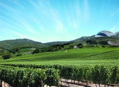 Paarl (pearl) Rock in the background Provinces Of South Africa, Small Towns, Touring, Vineyard, Golf Courses, Photo Galleries, African, City, Spin