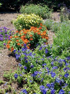 From Penn State Arboretum