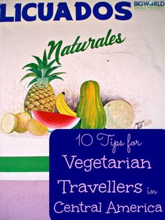 10 Tips for Vegetarian Travellers in Central America {Big World Small Pockets}