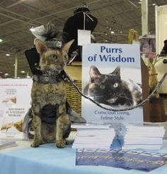Fun at the National Capital Cat Show