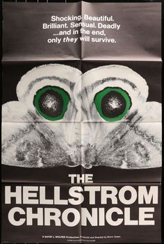 The Hellstrom Chronicle - Waylon Green Documentary, sci fi, horror and apocalyptic prophecy. Movie Posters For Sale, Original Movie Posters, Insect Movies, Best Documentaries, Vintage Horror, Horror Films, Vintage Movies, Movies And Tv Shows, Snake Skin