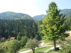 Žekovec near Mozirje