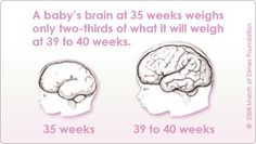 40 Reasons to give baby 40 weeks of pregnancy