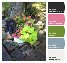 Michele A. used ChipIt! by Sherwin-Williams to capture local color. Her inspiration was these gorgeous flowers.
