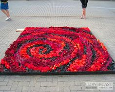 Contest of flower carpets in Ventspils (Latvia) | FLOWERCAST.COM | All about flower design, floristics.