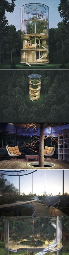 Conceptual tubular ‪#‎glass‬ ‪#‎house‬ by Kazakh architect Aibek Almassov wraps around a mature tree