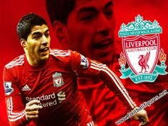 Luis Suarez: a Liverpool fan's view Liverpool Fc Wallpaper, Liverpool Wallpapers, Liverpool Fans, Liverpool Football Club, Mary Lou Retton, You'll Never Walk Alone, English Premier League, One Life, Manchester United