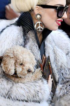 Lady Gaga and Fozzi