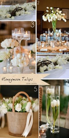 Honeymoon Tulips – Get To Know Your Wedding Flowers