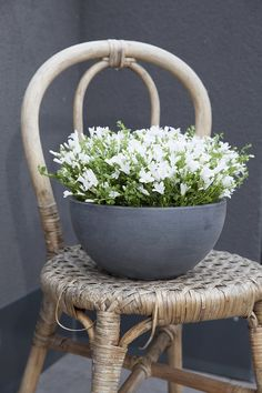 Plast, Flower Beds, Brussels, Balcony, Planter Pots, Outdoors, Gardening, Flowers, Design