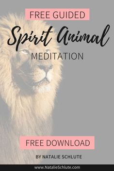 In a spirit animal meditation, you'll come face to face with your spirit animal and ask it for messages that you need to hear in your life right now. Uncover the beautiful secrets that your spirit animal has for you. #meditation #spiritanimal #guidedmeditation Free Guided Meditation, Meditation For Beginners, Meditation Quotes, Animal Spirit Guides, Your Spirit Animal, Remember Who You Are, Just For You, Spiritual Guidance, Best Vibrators