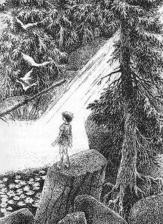 Illustration: Ilon Wikland - Ronja the Robbers Daughter, book by Astrid Lindgren, creator of Pippi Longstocking Ink Illustrations, Children's Book Illustration, Illustrators, Fairy Tales, Drawings, Artwork, Pippi Longstocking, Tattoos, Jessie