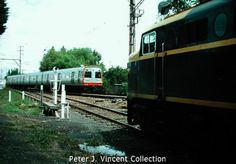 Comeng train in VicRail tangerine livery at Fairfield 1985.  P.J.Vincent collection.