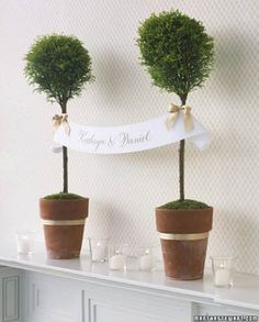 Use a topiary to display a banner for your big day; this is a great way to introduce your guests to your wedding and/or reception. And then once the wedding is over we can plant the trees and watch our love grow as the trees grow and we will always remember when we planted them because it would be our wedding day.
