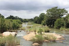 K2C Biosphere News: SanPARKS and WWF partners with K2C to implement a ...
