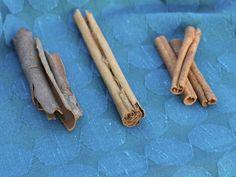 Zľava: indická škorica dalchini, pravá cejlonská škorica, čínska škorica cassia