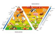doppia piramide alimentare ambientale