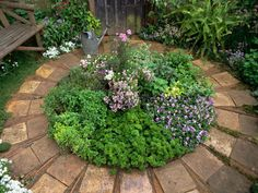 Growing herbs together in a circle can soften the edges of hardscaping. Herbs make wonderful ornamental features in borders or in their own self contained space. Beyond being just pretty, herbs are valued for their medicinal and culinary properties.