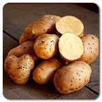 Organic German Butterball Potato One of our favorites!  #highmowingseeds