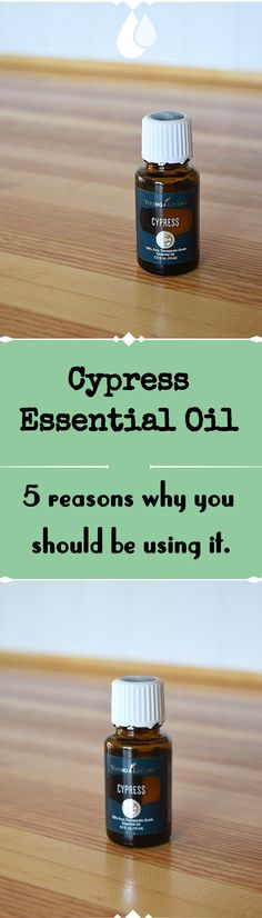 5 Reasons why you should use Cypress Essential oil - A Stray Kitchen