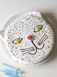 Cat cake / UKKONOOA: Synttärit / Birthday Party