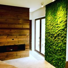 Zielona ściana z mchu stabilizowanego