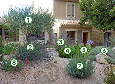 Un coin de jardin qui ne craint pas la sècheresse (Scènes de jardins)